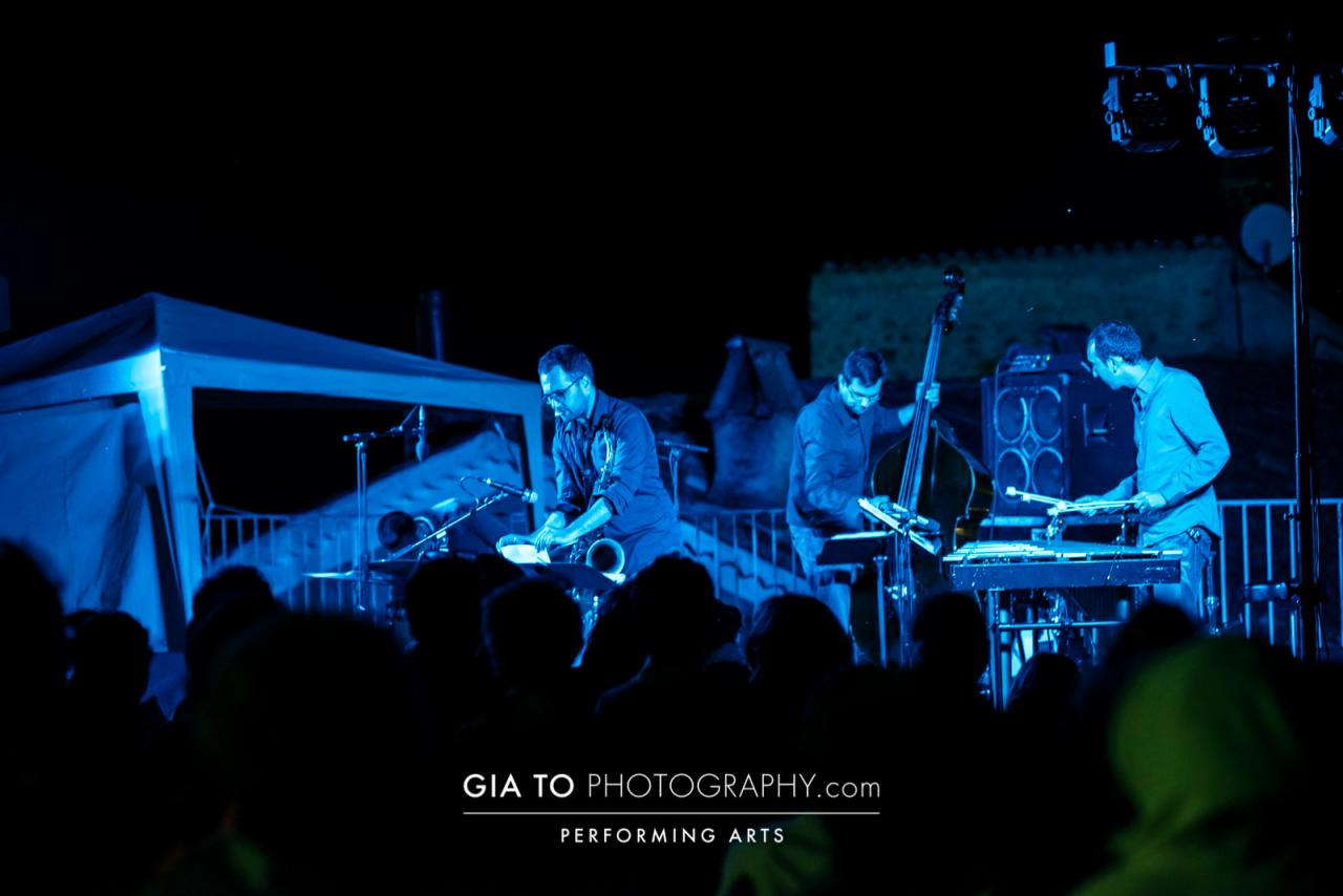 Blue Motte Jazz 2014 - photo Gia To -b 9001
